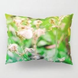 Nature photography dandelion II Pillow Sham