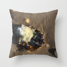 Shells in the sand 1 Throw Pillow