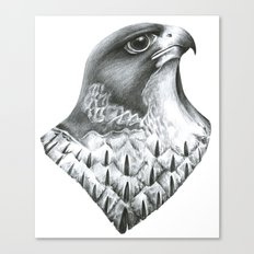 Falcon Canvas Print