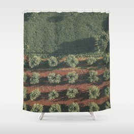 Aerial photo, nature textures, drone photography, olive trees, Apulia, Italian countryside Shower Curtain