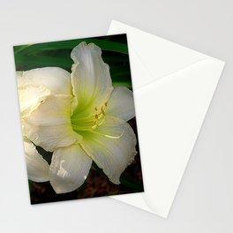 Glowing white daylily flowers - Hemerocallis Indy Seductress Stationery Cards