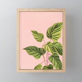 Upstart / Tropical Plant Framed Mini Art Print