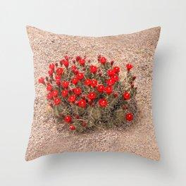 Sandia Cactus Flowers Throw Pillow
