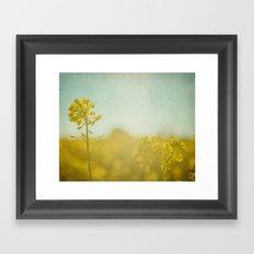 Spring Sun Framed Art Print
