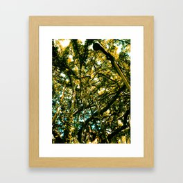 Monkey Popzzle Framed Art Print