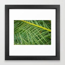 Crossed Palms Framed Art Print