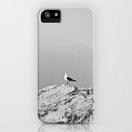 Patagonia iPhone Case