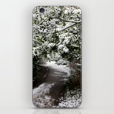 Snowy Path in The Trees iPhone & iPod Skin