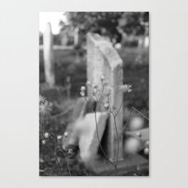 Looper's Cemetery 5 Canvas Print
