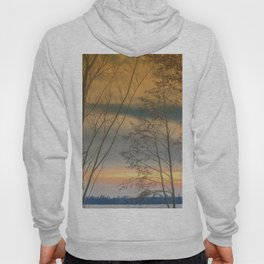 Evening sun over a lake Hoody