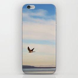 FREE SPIRITS HAVE TO SOAR ♡ iPhone Skin