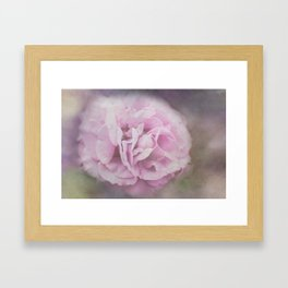 Lavender Ethereal Rose Framed Art Print