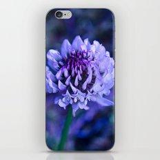 Flower Pop  iPhone & iPod Skin