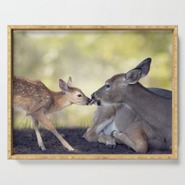 White-tailed female deer with  her  little baby Serving Tray