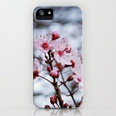 Cherry Blossom iPhone (5, 5s) Slim Case