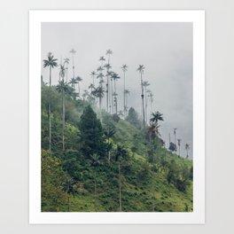 Cocora Valley Art Print