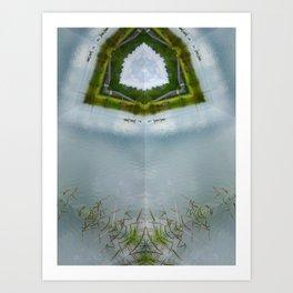 The Duck Pond Art Print