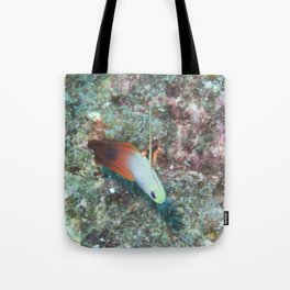 Fire Goby Tote Bag