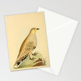 Libyan Grouse11 Stationery Cards