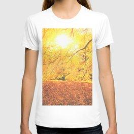 New York City Autumn Sun T-shirt