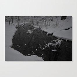 Snowy March Canvas Print