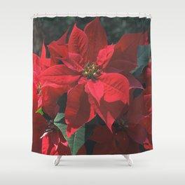 Poinsettia Shower Curtains For Any Bathroom Decor Society6