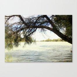 The Murray River - Australia Canvas Print