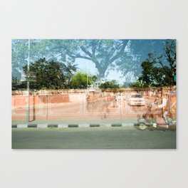Coral Wall in India Canvas Print