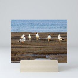 Drill Sergeant Seagull Mini Art Print