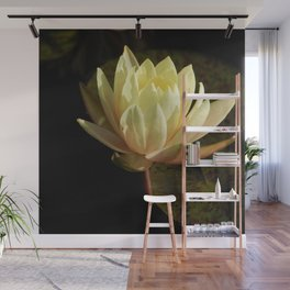 White water lilies 5 Wall Mural