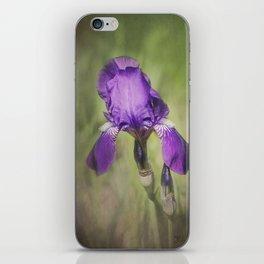 Bearded Iris iPhone Skin