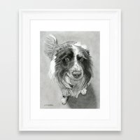 border collie Framed Art Prints featuring Border Collie by Sarahphim Art