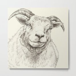 The Good Sheep Metal Print