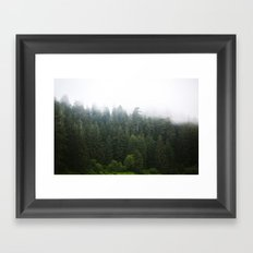 Forest Fog II Framed Art Print