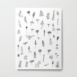 Wild plants Metal Print