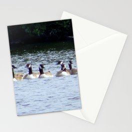 CANADA GEESE ON LOUGH ERNE Stationery Cards