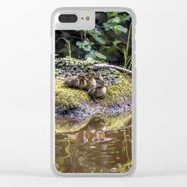 Eight Mallard ducklings Clear iPhone Case