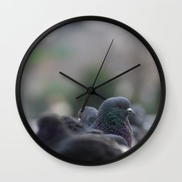 The Pigeon that dared to look back Wall Clock