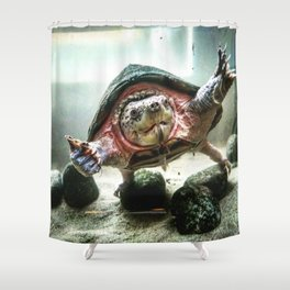 Terrified Turtle Shower Curtain