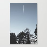 plane Canvas Prints featuring Plane by Tgdesign