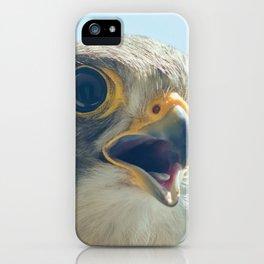 Common Kestrel Portrait Beak Wide Open (Falco tinnunculus) European kestrel. iPhone Case