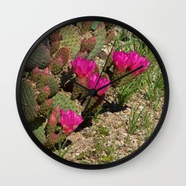 Beavertail Cactus in Bloom Wall Clock
