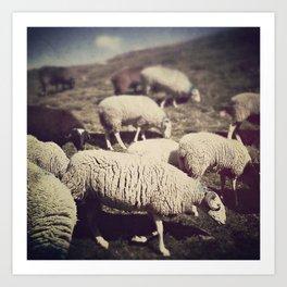 Mouton Art Print