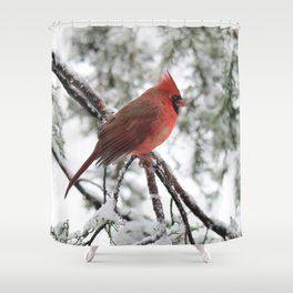 Wet Snow Cardinal (vertical) Shower Curtain