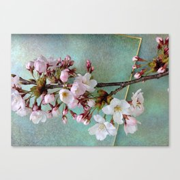 "Cherry blossoms on ""Wa-shi""  -桜に和紙 Canvas Print"