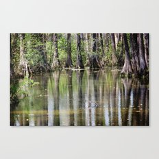 Cypress Mirror Canvas Print