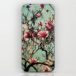 Pink Japanese Magnolia Tree in Flower iPhone Skin