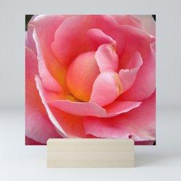 Peace Rose Mini Art Print