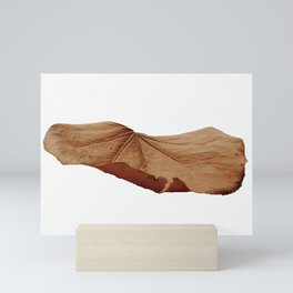Singe Autmn Leaf Mini Art Print