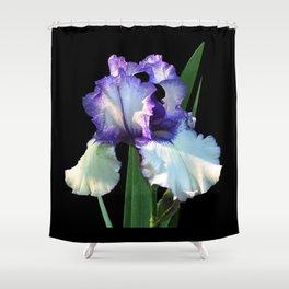Iris 'Freedom Song' on black Shower Curtain